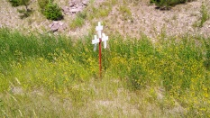 crosses that line the road at the scene of accidents, a reminder of how dangerous roads can be