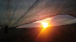 sunrise under tarp