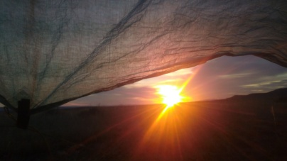 sunrise under tarp